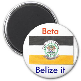 Belize it magnet