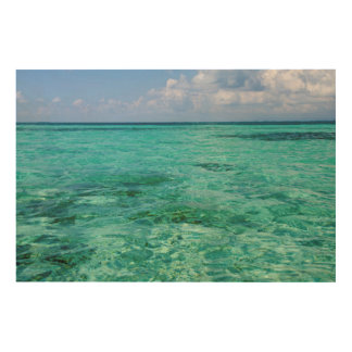 Belize, Stann Creek, Southwater Cay Wood Print