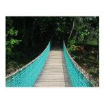 Belize Wooden Bridge Postcard