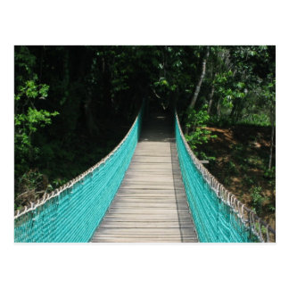 Belize Wooden Bridge Postcard