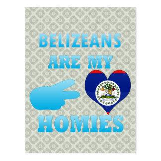 Belizeans are my Homies Postcard
