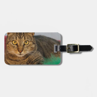 Bell Bag Tag