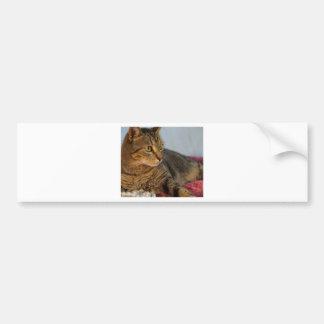 Bell Bumper Sticker