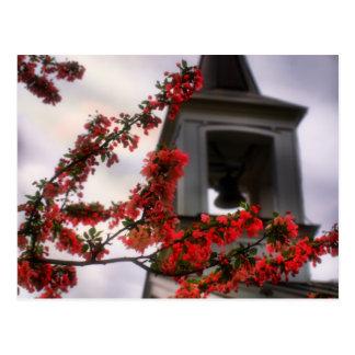 bell flowers the Old Lynchburg Virginia Cemetery Postcard