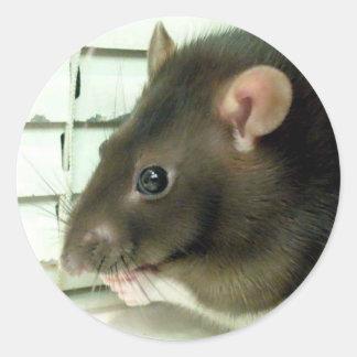 Bell los pegatinas de la rata etiquetas redondas