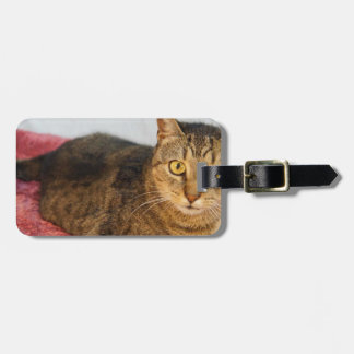 Bell Luggage Tag