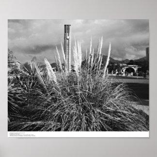 Bell Tower, Pampas Grass, December, 1966 Poster
