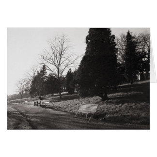 Bell Vue Park, Newport, Mon (Dec 1977) Card