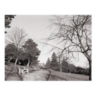 Bell Vue Park, Newport, Mon Postcard