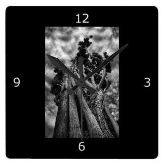 Bella arte: Árboles surrealistas Reloj Cuadrado