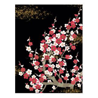 Bella arte de la flor de cerezo de Sakura del Tarjeta Postal