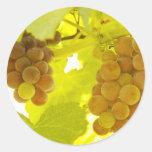 Bella arte de la vid de uvas etiqueta redonda