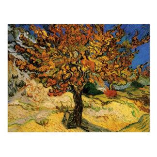 Bella arte del árbol de mora de Van Gogh F637 Tarjetas Postales