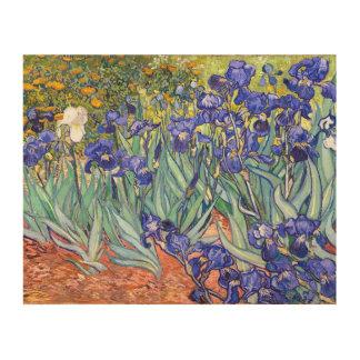 Bella arte floral del vintage de los iris de cuadros de madera
