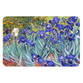 Bella arte floral del vintage de los iris de rectangle magnet
