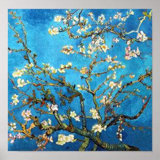 Bella arte floreciente de Van Gogh del árbol de Póster