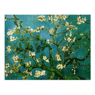 Bella arte floreciente de Van Gogh del árbol de Tarjeta Postal