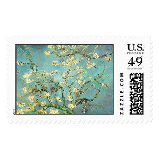 Bella arte floreciente del árbol de almendra de franqueo