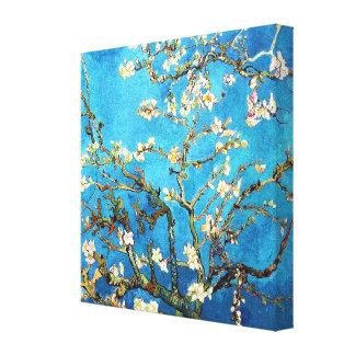 Bella arte floreciente del árbol de almendra de Va Impresión En Lona Estirada