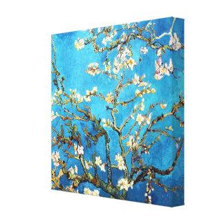 Bella arte floreciente del árbol de almendra de Va Impresión En Lienzo Estirada