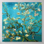 Bella arte floreciente del árbol de almendra de Va Posters