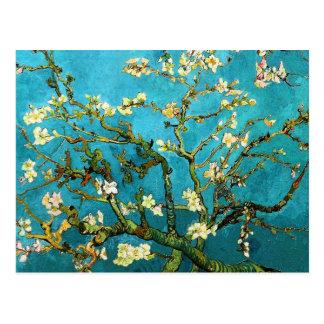 Bella arte floreciente del árbol de almendra de Va Tarjeta Postal