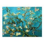 Bella arte floreciente del árbol de almendra de Va Postales
