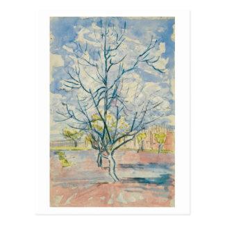Bella arte rosada de Van Gogh de los árboles de Tarjetas Postales