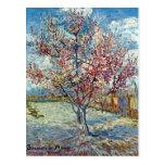 Bella arte rosada del árbol de melocotón de Van Go Postal