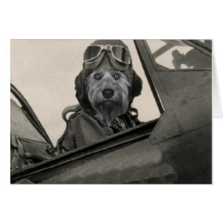 Bella As A 1940's Pilot Stationery Note Card