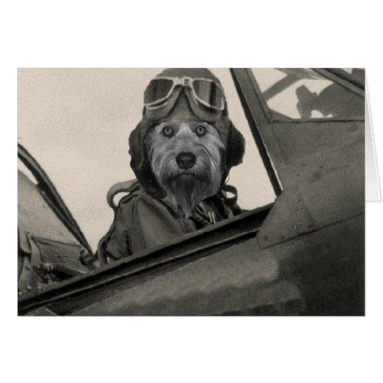 Bella As A 1940's Pilot Card