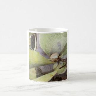 Bella Bromeliad Mug