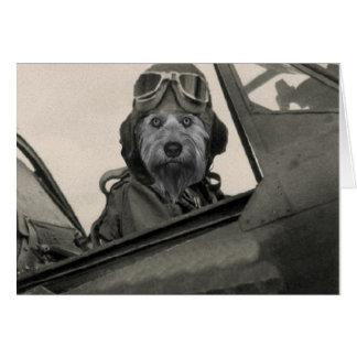 Bella como piloto de los años 40 de A Tarjeta Pequeña