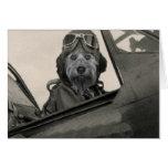 Bella como piloto de los años 40 de A Tarjetas