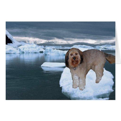Bella en un Iceburg en la Antártida Tarjeta Pequeña