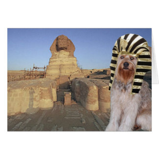 Bella In Egypt Stationery Note Card