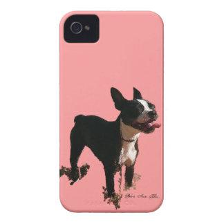 Bella la Boston Terrier - caso 4/4S de Iphone Funda Para iPhone 4