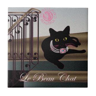 Bella: La teja hermosa del gato 11