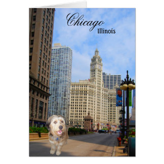 Bella On Michigan Avenue In Chicago Cards