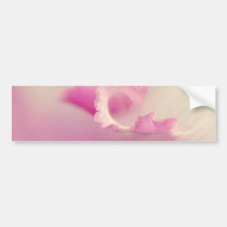 Bella pink one bumper sticker