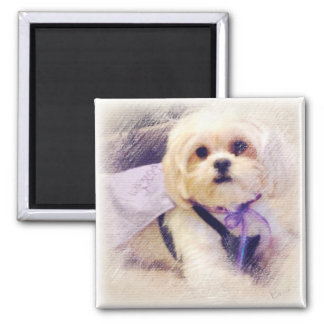 Bella Puppy Power 2 Inch Square Magnet