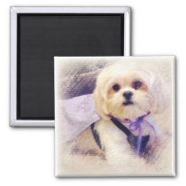 Bella Puppy Power Magnet