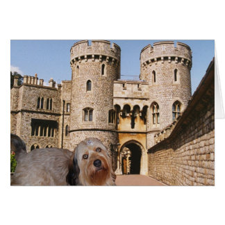 Bella - sporting a crown - Visits Windsor Castle Stationery Note Card