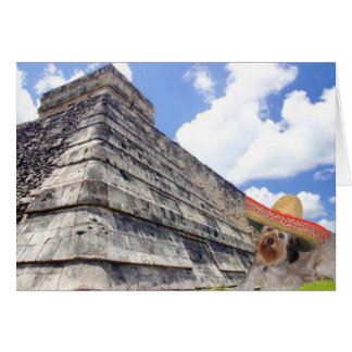 Bella Visiting Chichn Itz Mexico Greeting Cards