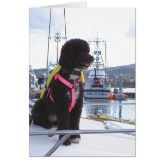 Bella y el colector de perro tarjeta pequeña