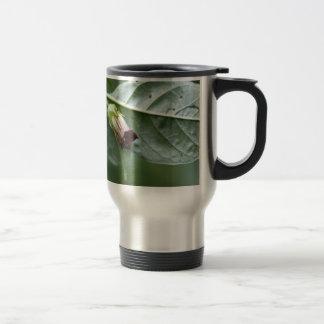 Belladonna or deadly nightshade (Atropa belladonna Travel Mug