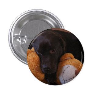 Bellamy the Chocolate Labrador badge Button