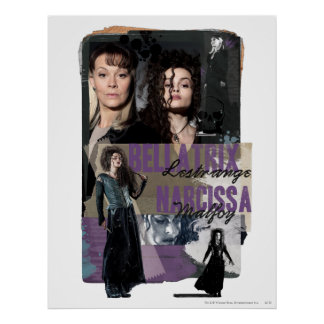 Bellatrix Lestrange and Narcissa Malfoy Poster