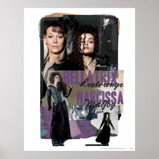 Bellatrix Lestrange and Narcissa Malfoy Poster