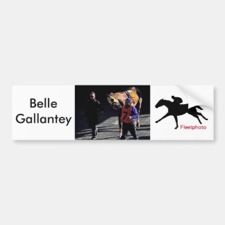 Belle Gallantey on New Year's Day Car Bumper Sticker